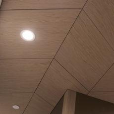 Dirtt 16X9 Ceiling 4 Thumbnail