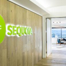 Sequoia 361 Thumbnail