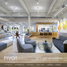 Pivot Brochure
