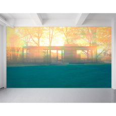 Maharam Wall Print Glass House May